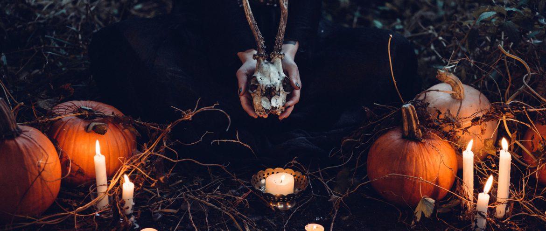 Czas na Halloween! Mroczne akcesoria z sieciówek